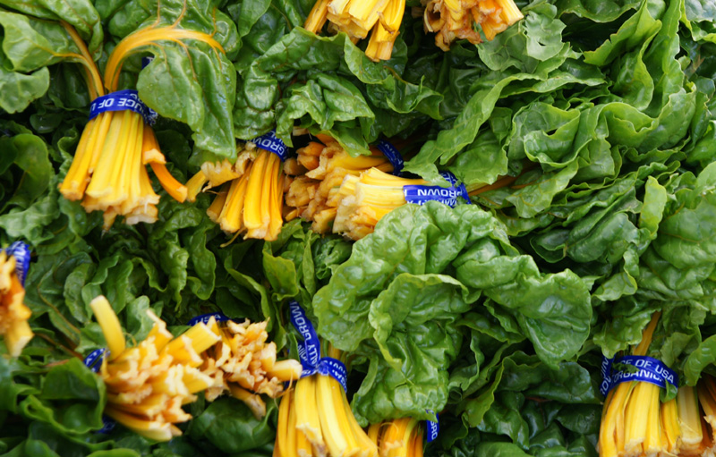 /wp-content/uploads/2020/10/Beta-vulgaris--Golden%20Chard--Farmers%20Market-Sunnyvale-DSC08099-California-2.jpg