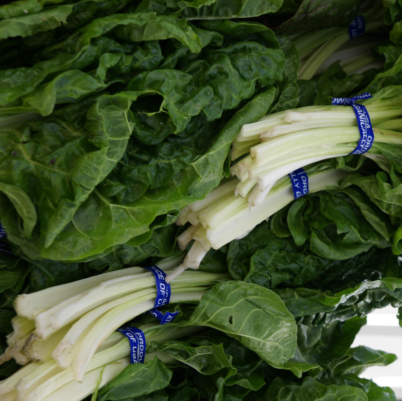 /wp-content/uploads/2020/10/Beta-vulgaris--Green%20Chard--Farmers%20Market-Sunnyvale-DSC08093-California-3.jpg