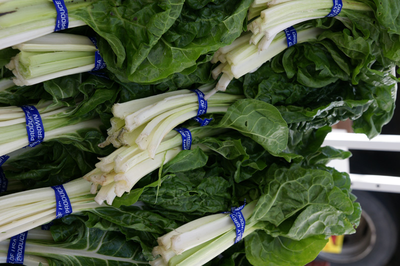 /wp-content/uploads/2020/10/Beta-vulgaris--Green%20Chard--Farmers%20Market-Sunnyvale-DSC08094-California-1.jpg