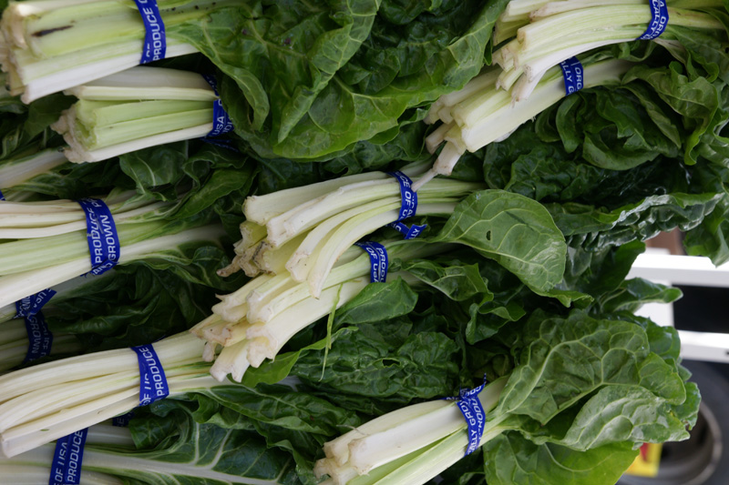 /wp-content/uploads/2020/10/Beta-vulgaris--Green%20Chard--Farmers%20Market-Sunnyvale-DSC08095-California-2.jpg
