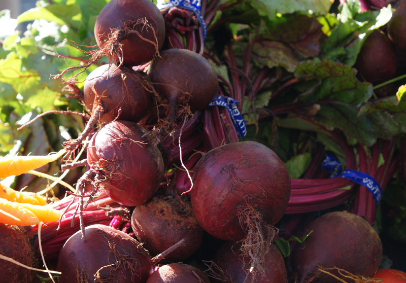 /wp-content/uploads/2020/10/Beta-vulgaris-Red%20Ace%20Beets-Farmers%20Market-Sunnyvale-DSC08076-California-1.jpg