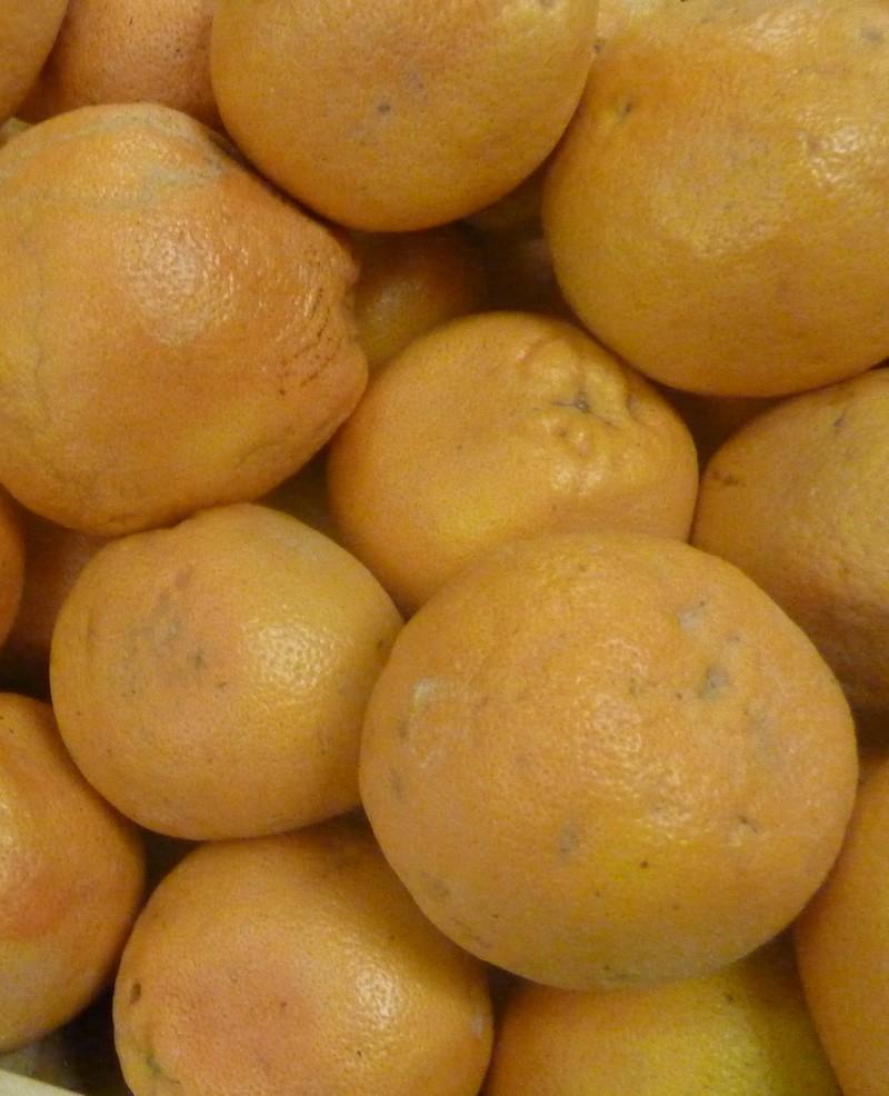 /wp-content/uploads/2020/10/Citrus-paradisii-grapefruit-California-2.jpg